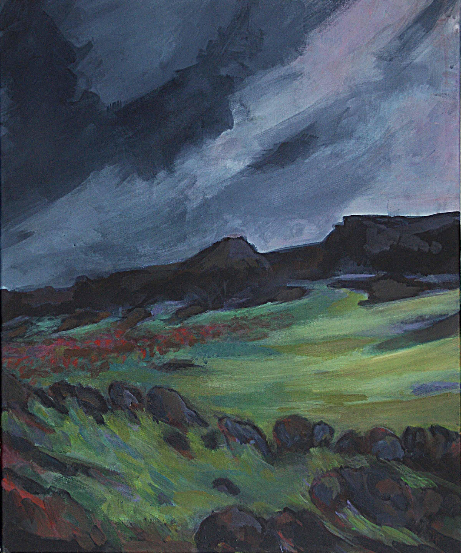 NORDISK NATUR (2)  50 x 60